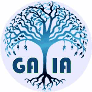 GAIA Platform Converter