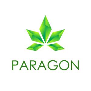 Paragon Converter