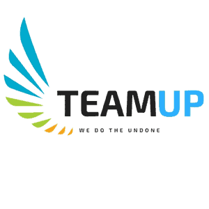 Buy TeamUP cheap